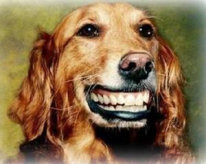Чистим зубы