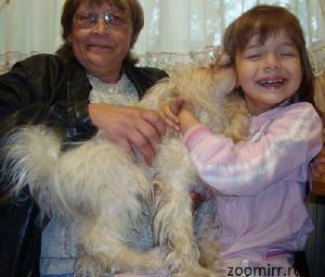 Порода собаки для ребенка