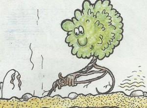 Растение,которое сворачивается в шарик