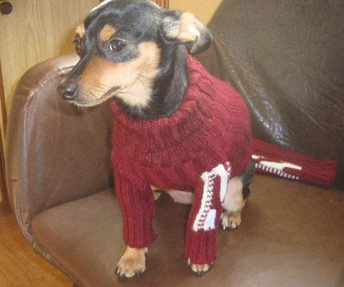 Новый свитерок