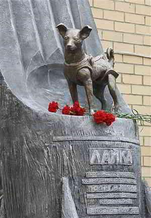Памятник герою-Лайке