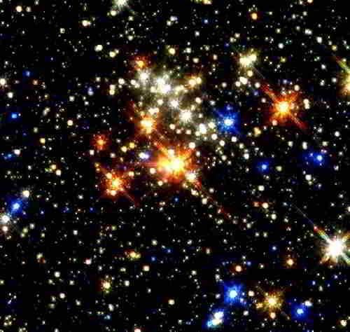 Такие разные звезды