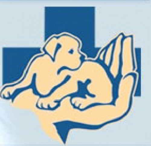 veterinarnyie kliniki bryanska