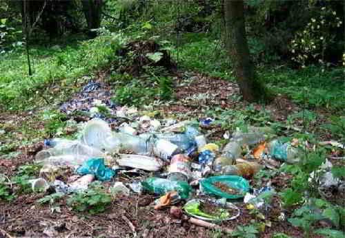 Горы мусора в лесу