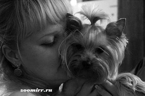 Люблю собак больше,чем людей