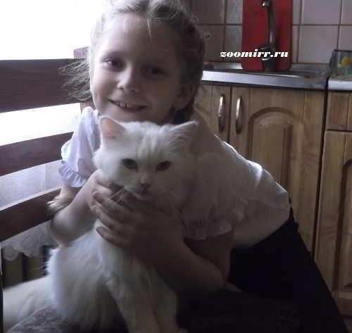 Кот Пушок и внучка Сонечка