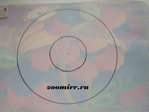 Малый и большой круг