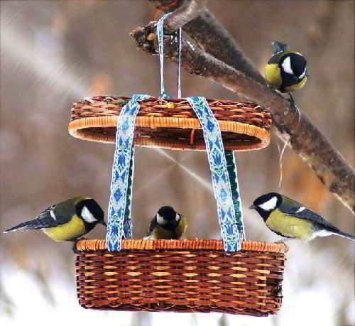 Подкормите птиц зимой