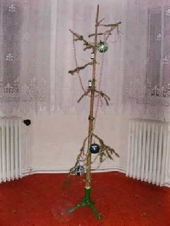 Какая зима,такая и елка