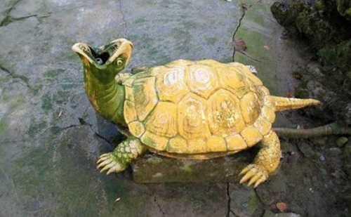 Уход за черепахой