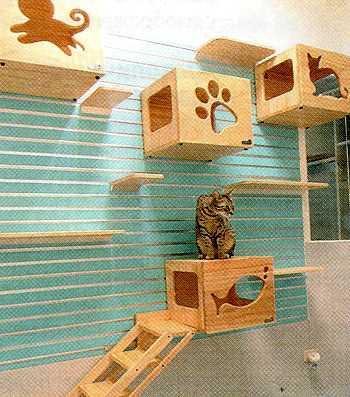 Игровая зона для кошки