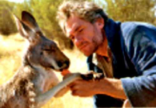 Благодарный кенгуру