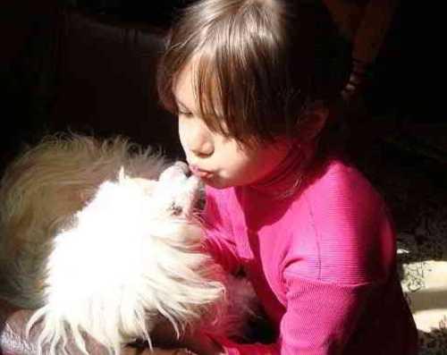 Будьте добрее к животным