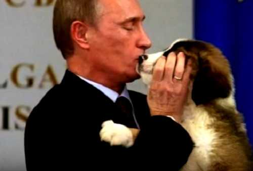 Подарок Путину-Йорго