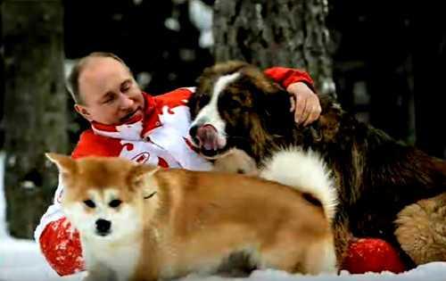 Собаки Путина
