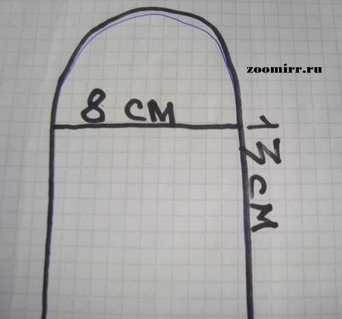 Размер лапки